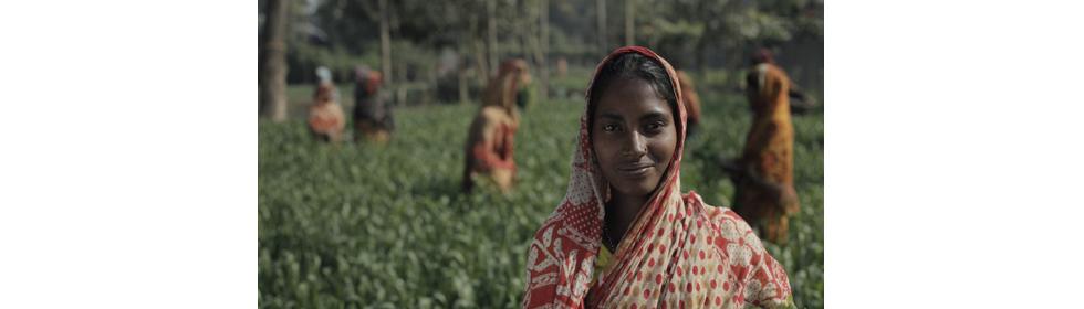 Bangladesh_Livelihoods