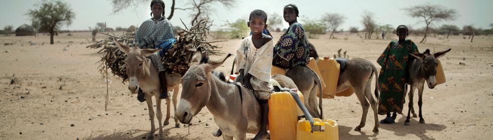Zakat_Niger