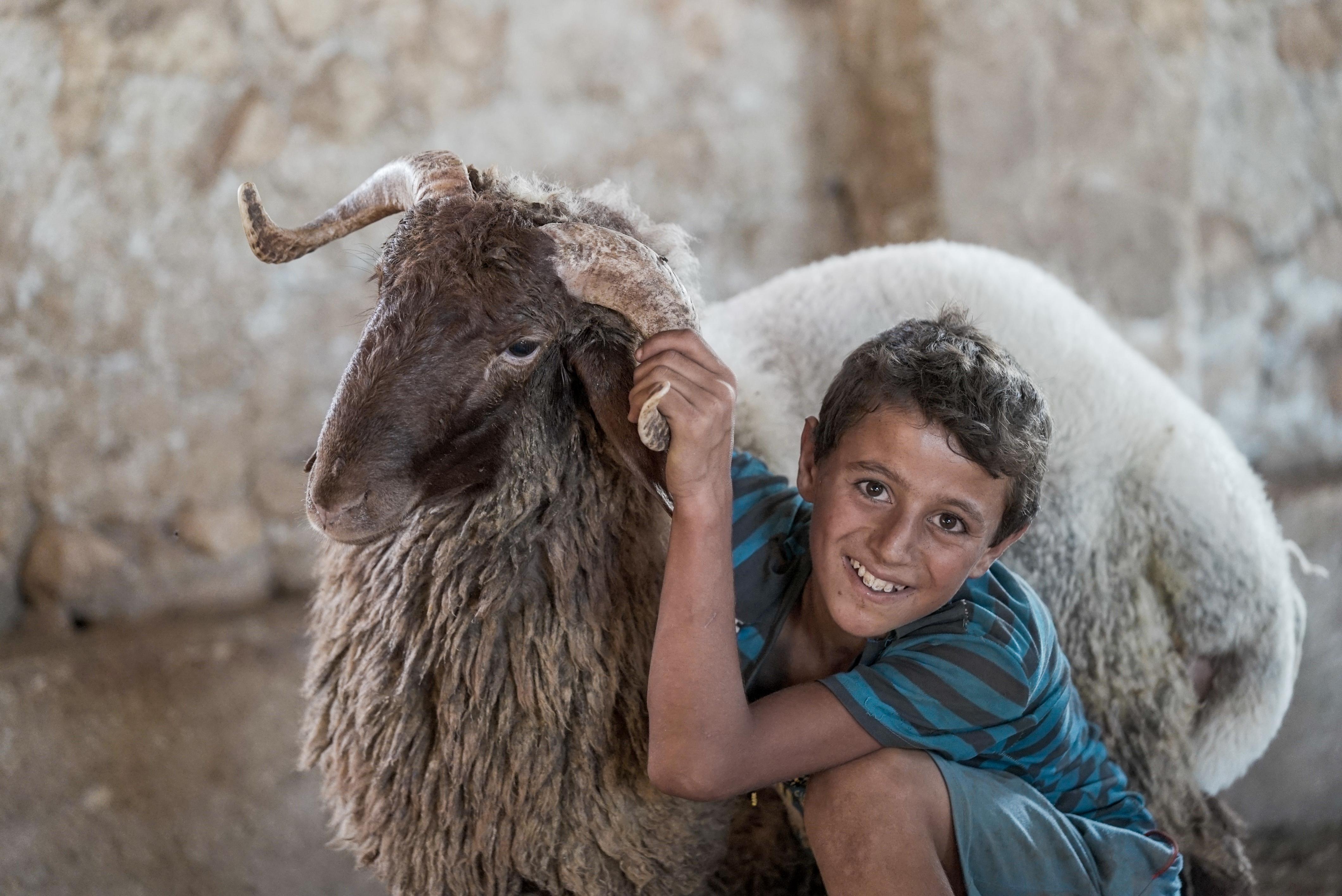 enfant et mouton